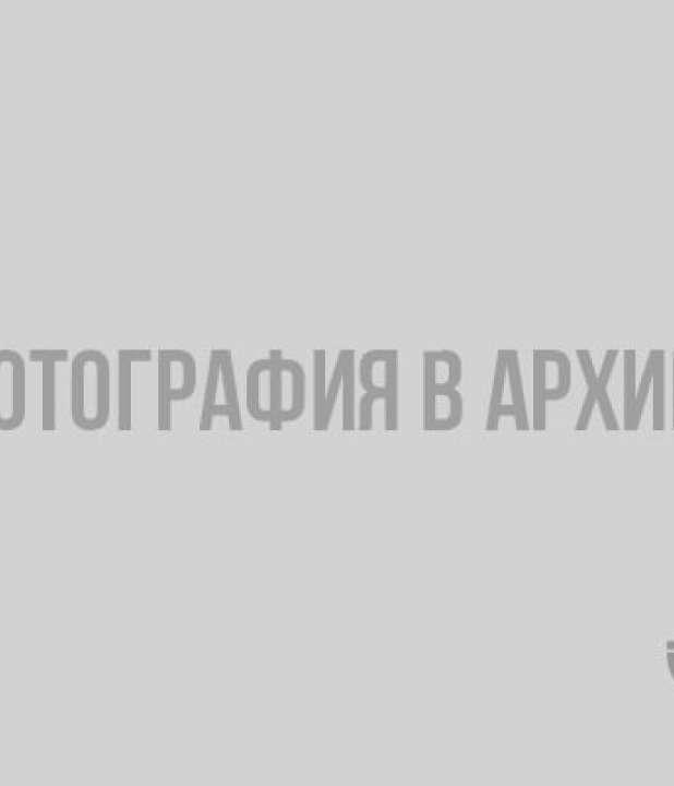 Фотография из журнала Огонек, 15 декабря 1913 года, № 50. Источник: http://ristikivi.spb.ru/albums/viipuri-vanha-tuomiokirkko.html?photo=27