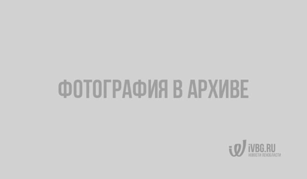 Развалины крепостного моста, обнаруженные под восточной стеной бастиона Выборгского замка