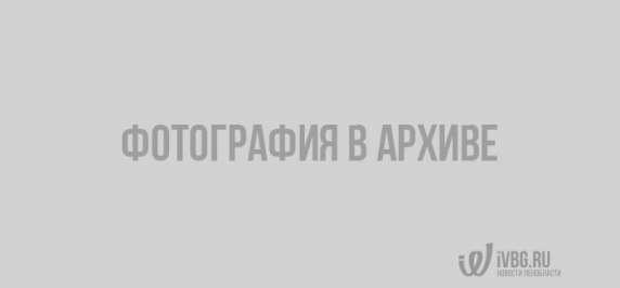 Источник: foreca.ru