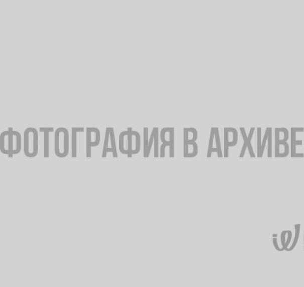 Из Атласа Финляндской губернии с уездами и городами и планами всем публичным строениям 1803 года