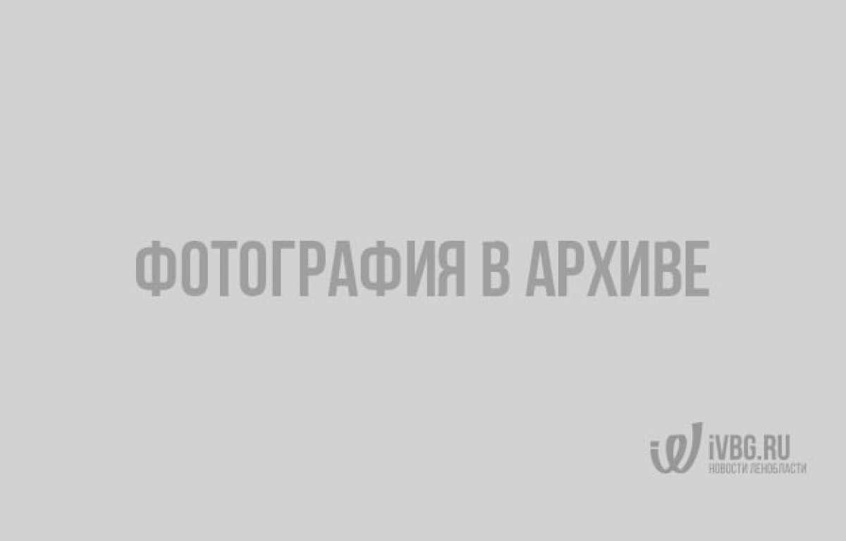 Субботним утром Выборг может окутать туман