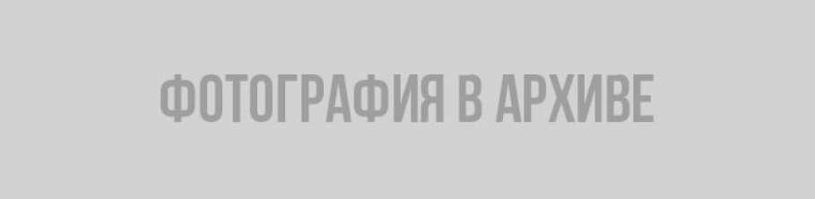 Владимир Цой: реставрация Часовой башни не отменена, а задерживается
