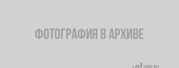 gismeteo-vyborg-pogoda