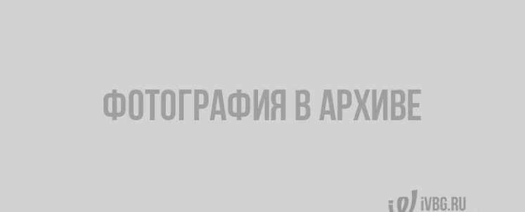 Капризы погоды в Выборге. Метель, оттепель, дожди, гололед и ветер