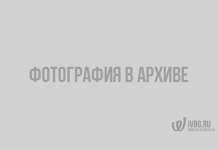 В Выборгском районе произошло 2 пожара за сутки
