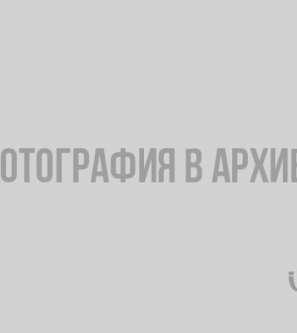 В Гвардейском поселке в Выборге горит приют для животных