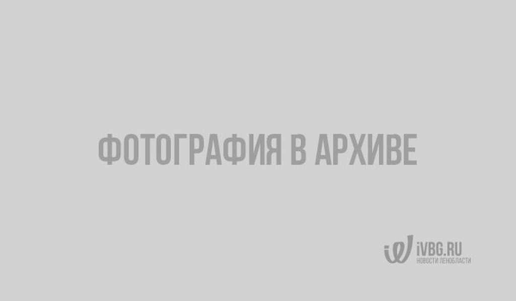 На финской границе водителей активно проверяют на трезвость