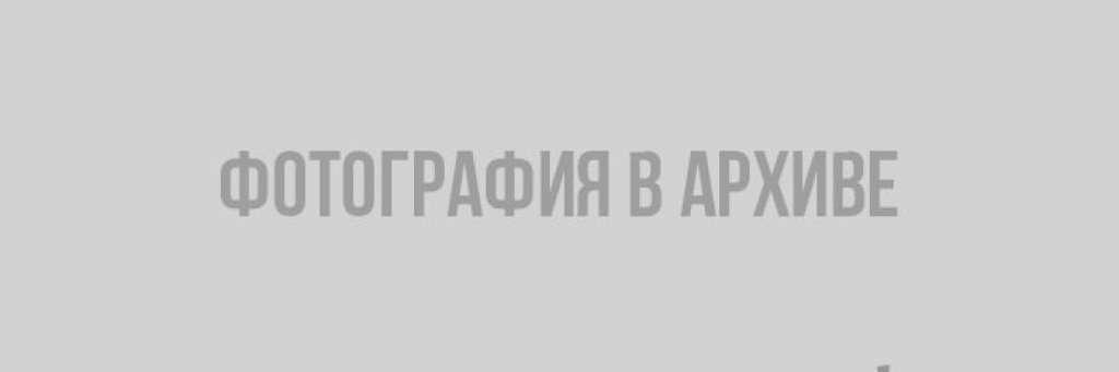 """Мебельный салон """"Элегия"""" в Выборге"""
