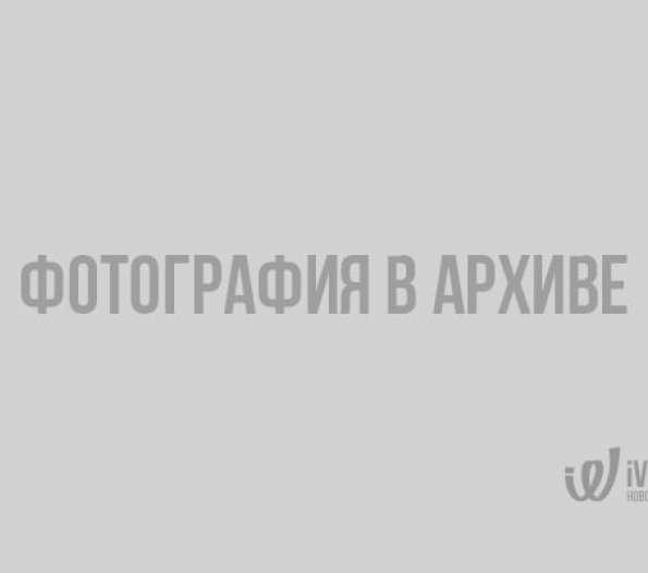 Палаточный лагерь для активной молодежи разобьют в Выборгском районе