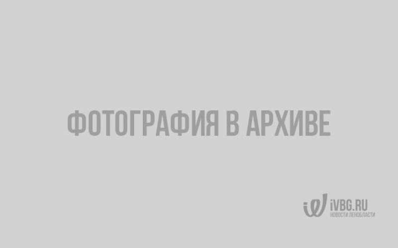 Выборгские полицейские сыграли в футбол с подростками