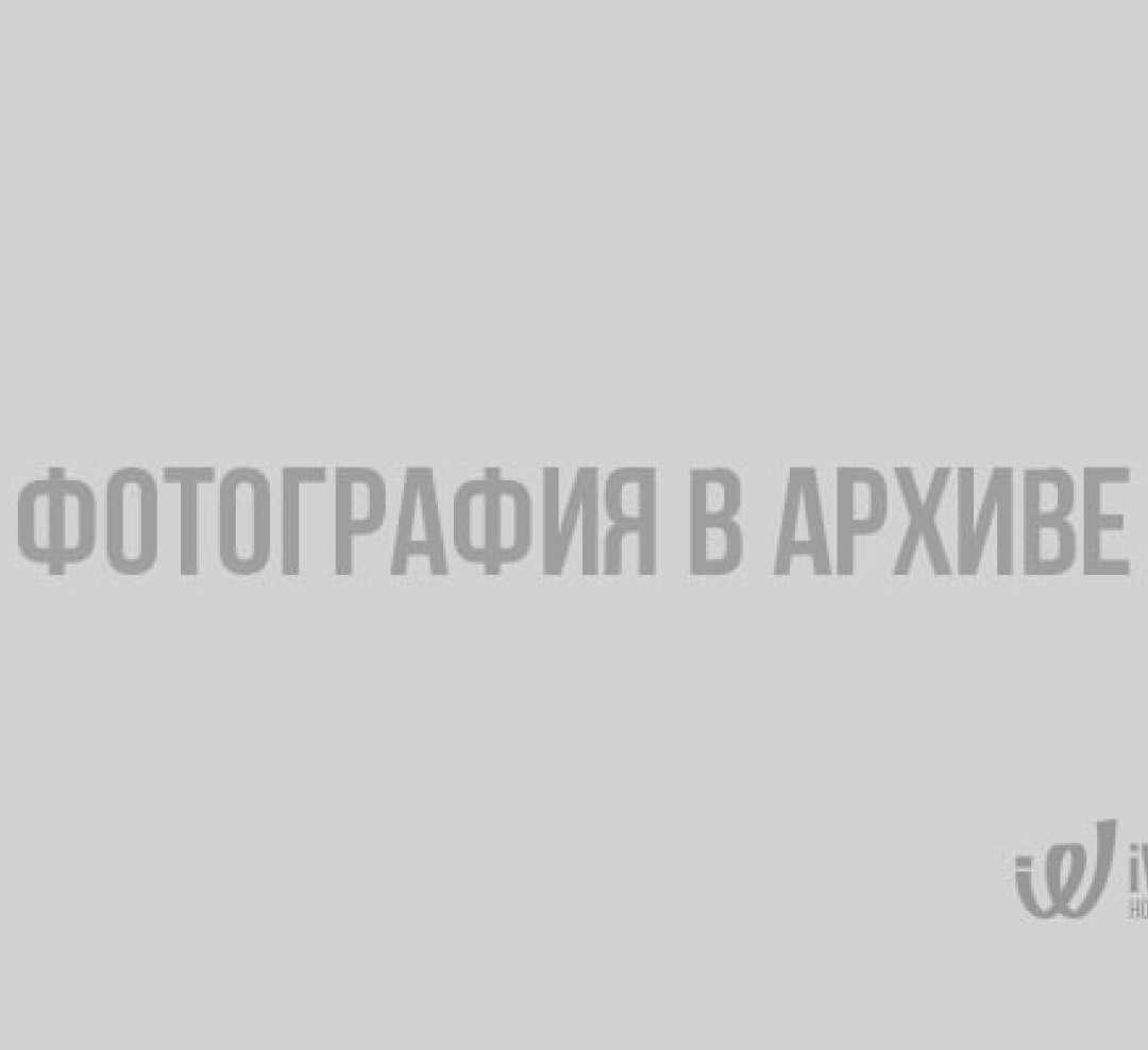 Приключения в Выборге. Сказочная история в 4 частях