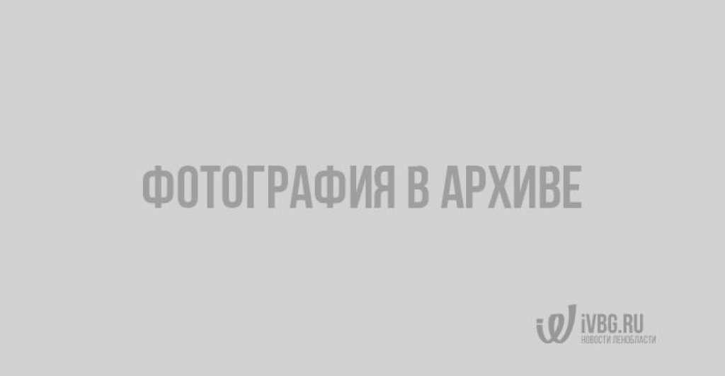 День в истории Выборга. Конец войны со Швецией