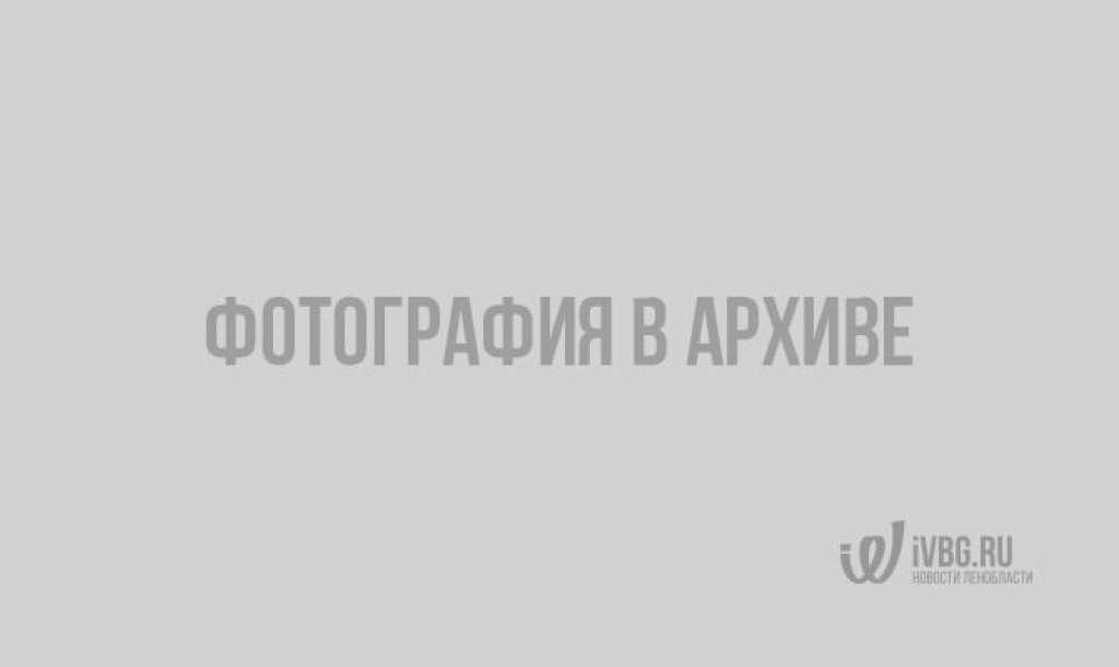 Выборгский замок подсветили в ночи