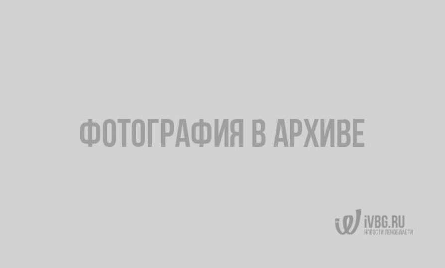 В Выборге бульвар Кутузова перекрыли дорожники и пыль