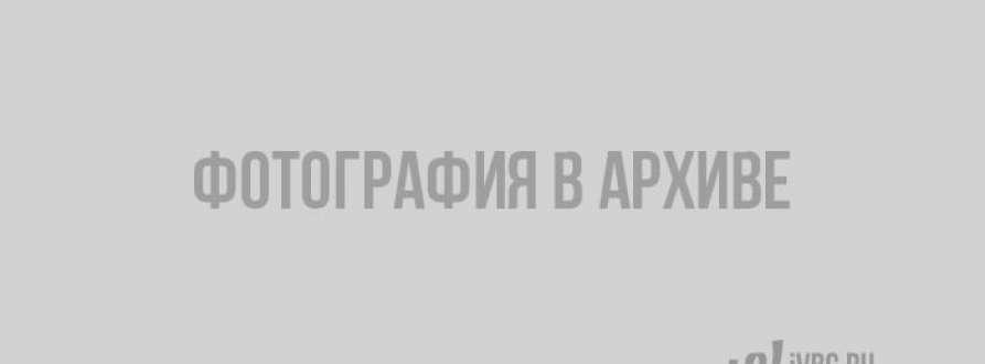 Выборгского лейтенанта Артёма Борздыко избили сотрудники МВД или неизвестные