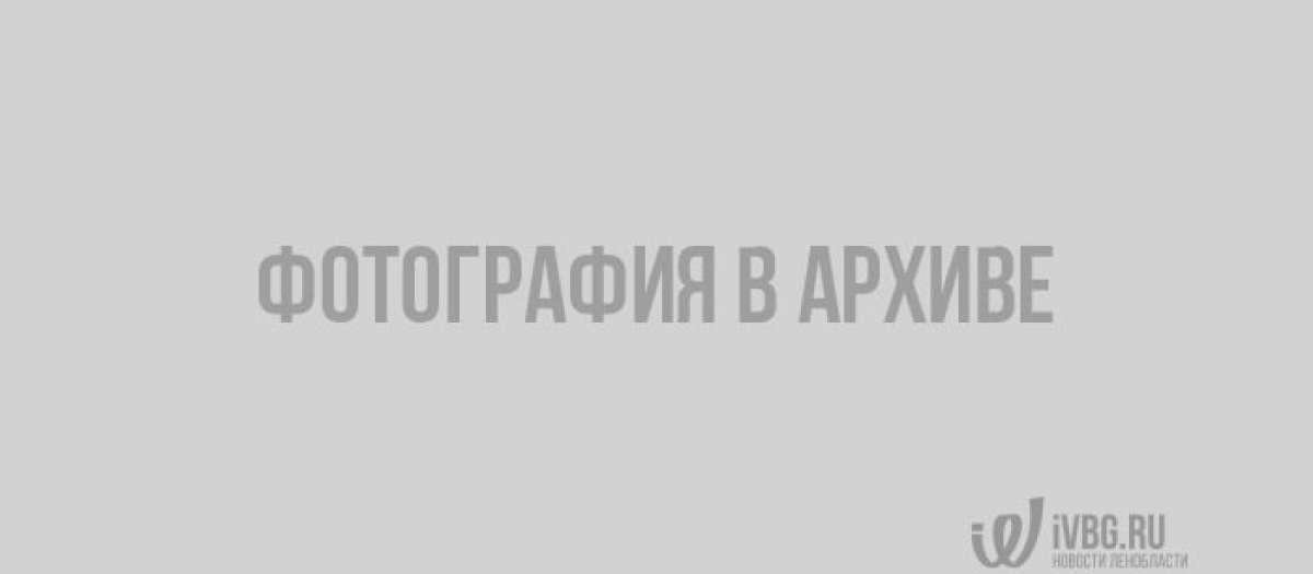 Патриарх Кирилл в Выборгском районе