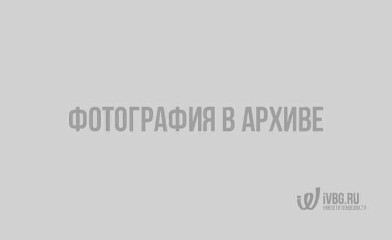 Начало учебного года в Индии. Фото: trip-point.ru
