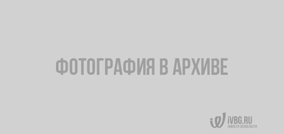 Смертельное ДТП в городе Отрадное Ленобласти