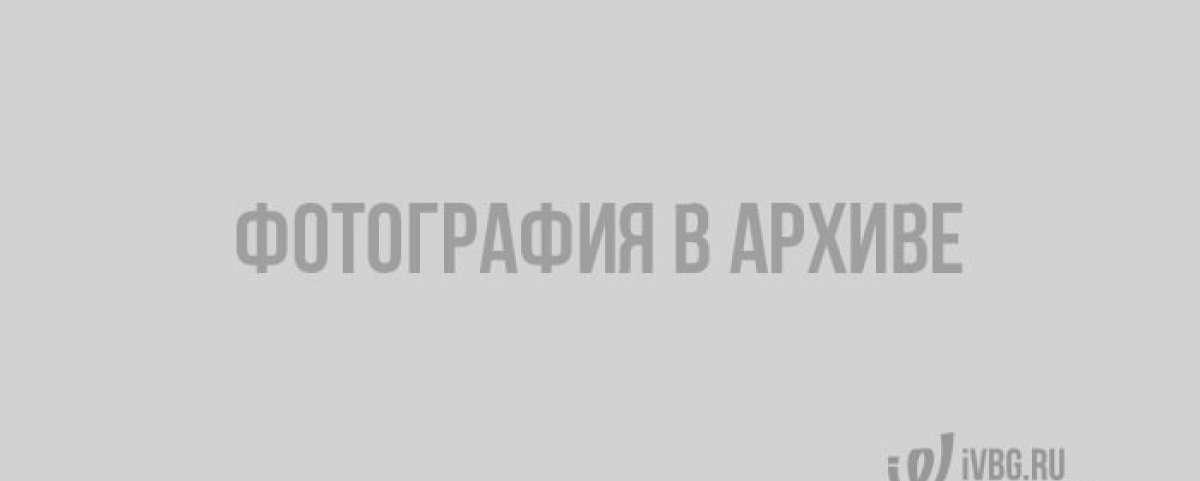 Межведомственная комиссия проверила мемориальные зоны лесов Ленобласти