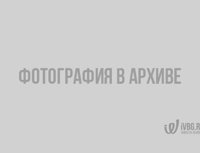 Под суд идёт мошенник, обокравший почти полсотни человек на 6 миллионов