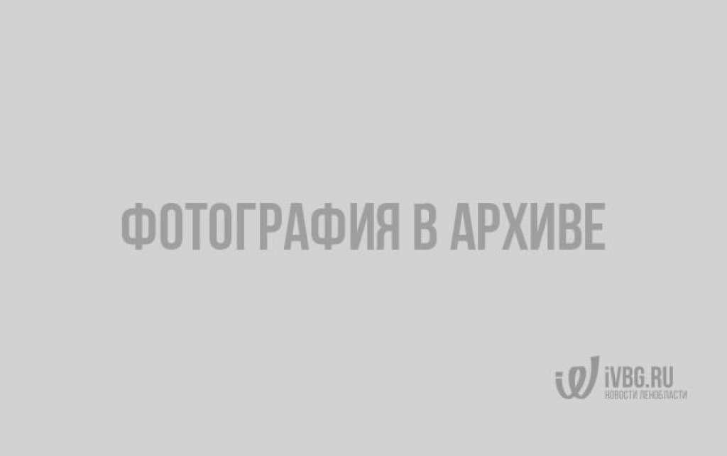 Картина Михаила Скотти «Минин и Пожарский в Москве» (1870 год)