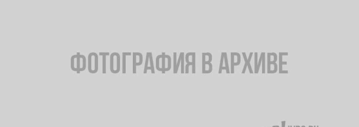 Жители Петербурга против установки памятника Цою из-за наркоманов и алкоголиков