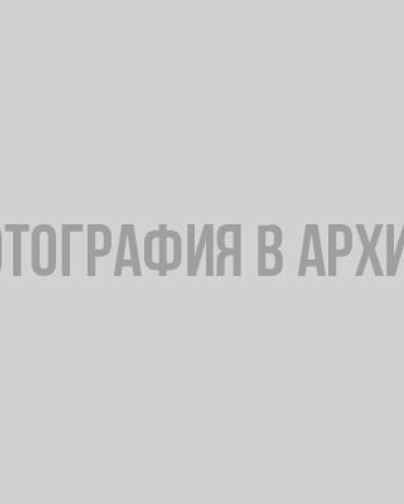 В сети опубликована новогодняя программа на Дворцовой площади в Петербурге