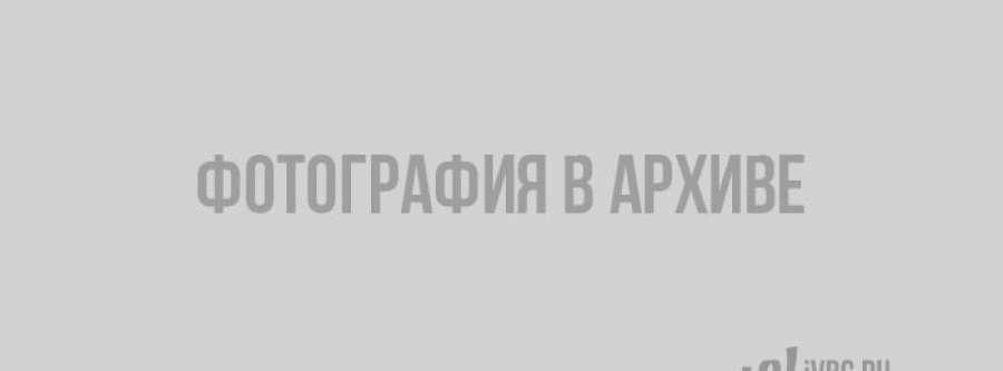 «Серебряное ожерелье России» пополнилось маршрутами из Ленобласти