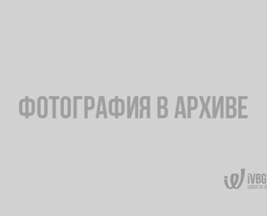 Границу с Финляндией к Новому году можно будет пройти быстрее