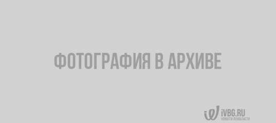 Очевидцы сообщают о серьезном ДТП в Отрадном. Есть пострадавшие