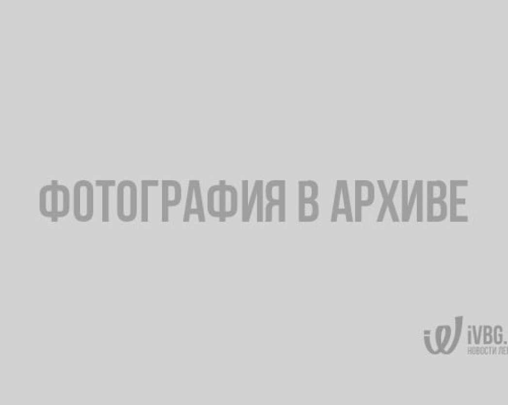 В ночь на 20 февраля в Ленобласти ожидается похолодание до -20