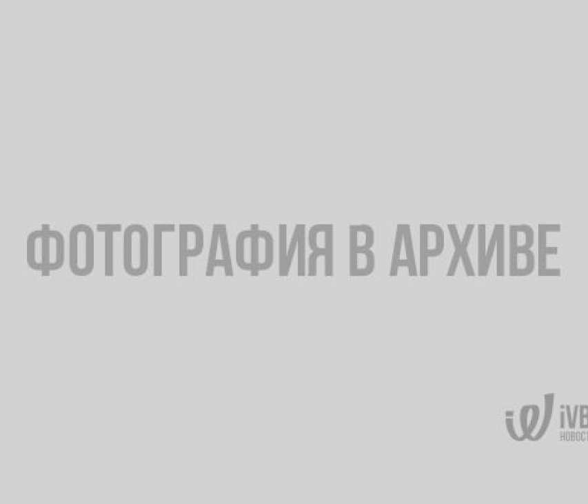 Европейские школьники создали литературную карту Европы