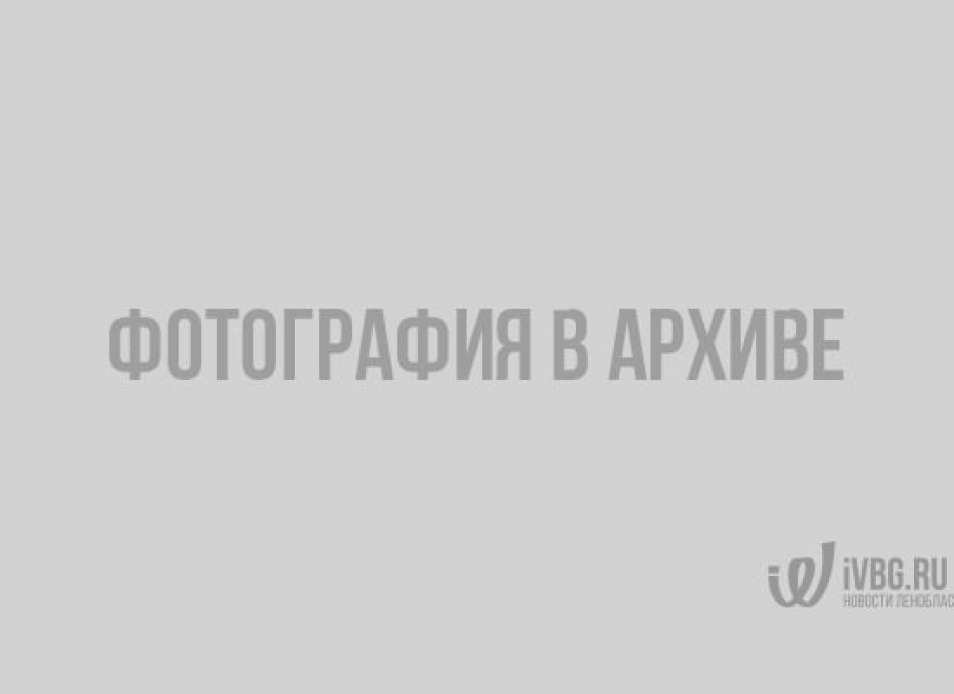 Что нужно знать об итогах президентских выборов в России