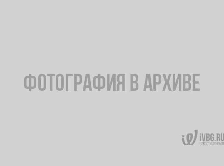 Скриншот с Google карт