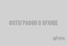 Как защитить себя и свой дом от природного пожара? Памятка МЧС