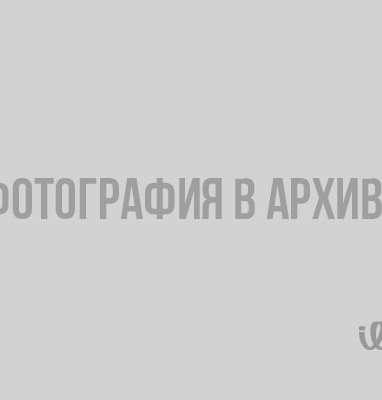 Поможет ли компьютерная грамота пенсионерам Ленинградской области