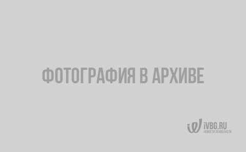 Картина «Будда победитель», 1925 год. Автор: Николай Рерих