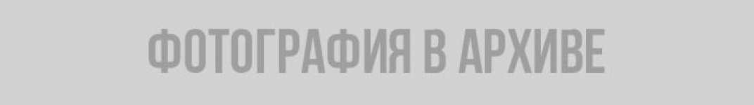 """Россиянам разрешили скачать свои данные из """"Вконтакте"""": как это сделать и что там хранится Россия, персональные данные, ВКонтакте, архив"""
