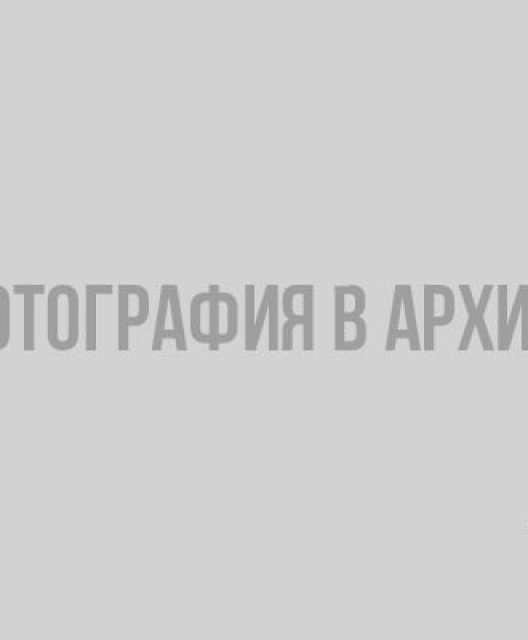 Фото: wiki.hi.ru