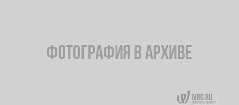 В Петербурге украли пушку 1940 года