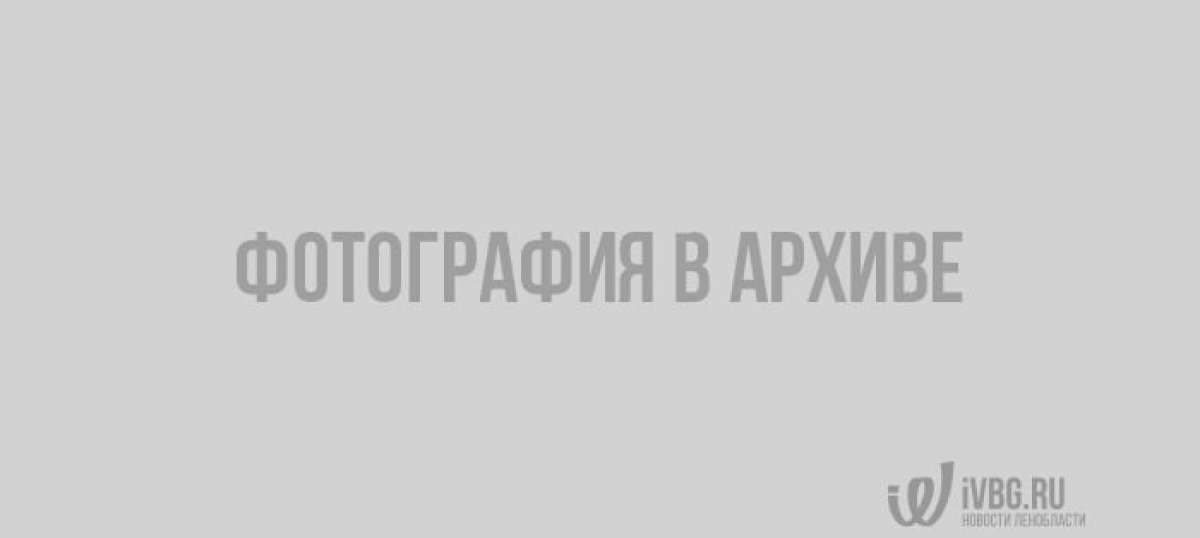 Кафе с бесплатными обедами для пенсионеров закрыли в Петербурге