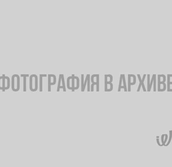 В Ленобласти запечатлели потрясающее северное сияние северное сияние, Ленобласть, Кондратьево