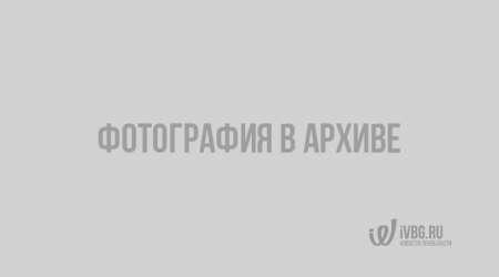 Мотоциклист попал в больницу после столкновения с иномаркой в Петербурге — видео Санкт-Петербург, мотоцикл, ДТП
