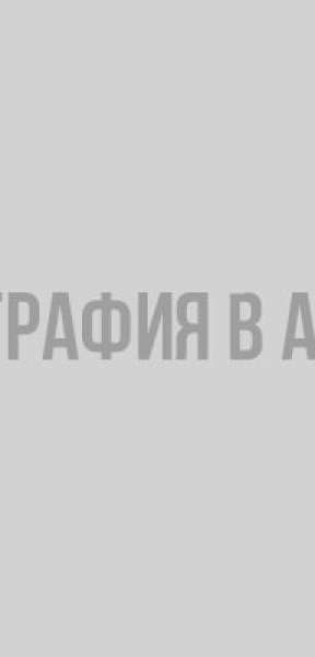 В Кудрово потерялся домашний ворон по кличке Ганс Потерявшееся животное, Кудрово, животные, Ворон