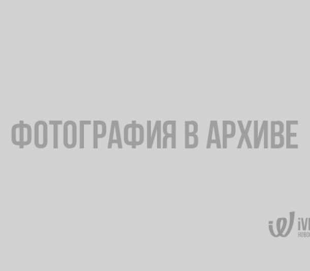 Очевидцы сообщают о крупном пожаре в Подборовье - фото Подборовье, лесной пожар, Ленобласть, Выборг