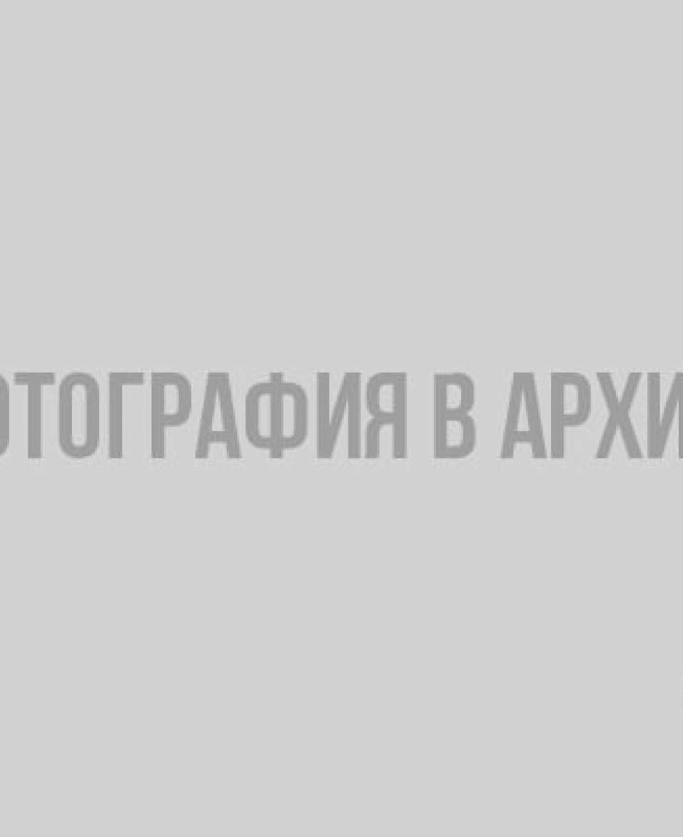 Неизвестные подожгли лес в заказнике «Кивипарк» в Выборгском районе лесной пожар, Ленобласть, Комитет по природным ресурсам, Выборгский район