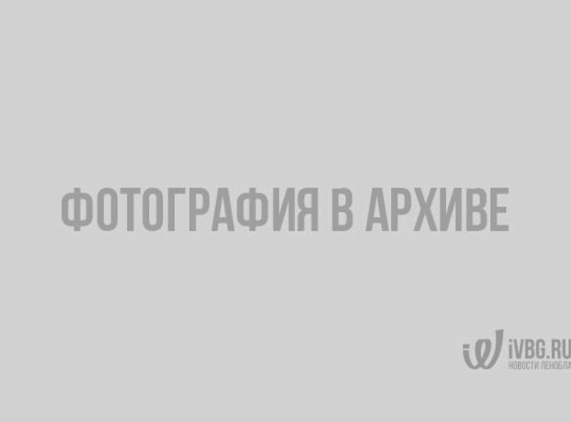 В Тихвине торжественно открыли современный ФОК — фото ФОК, Тихвин, спорт, здоровье, Александр Дрозденко
